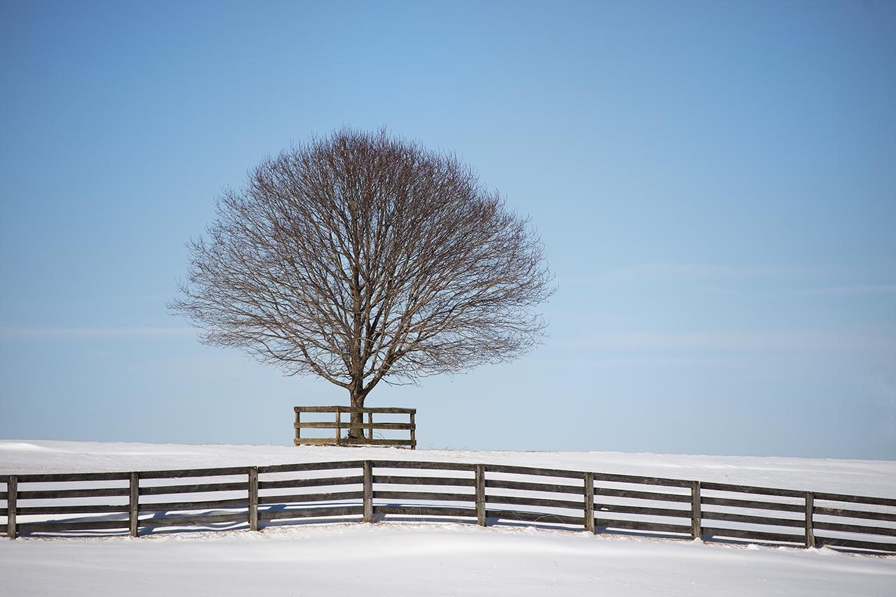D800-Worthington_Valley_in_Snow-0719-2014-01-22