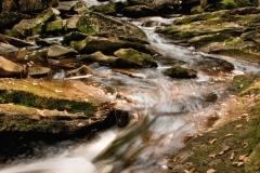 novice-shaun-moss-Elakala-Falls-Downstream