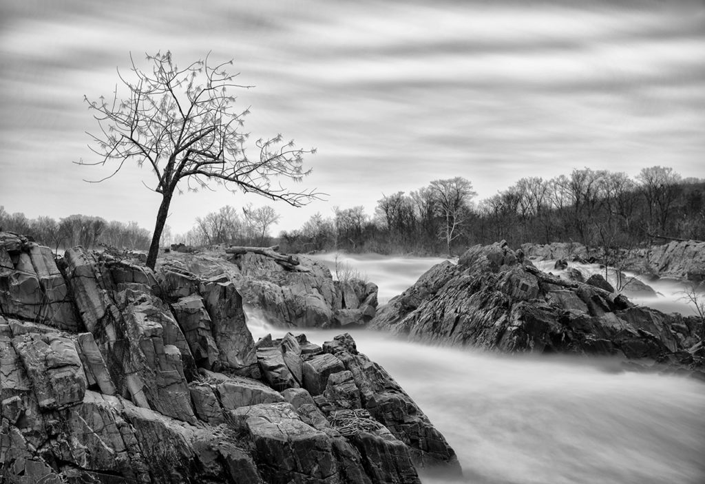 D800-Great Falls VA-0785-2014-02-08B&W