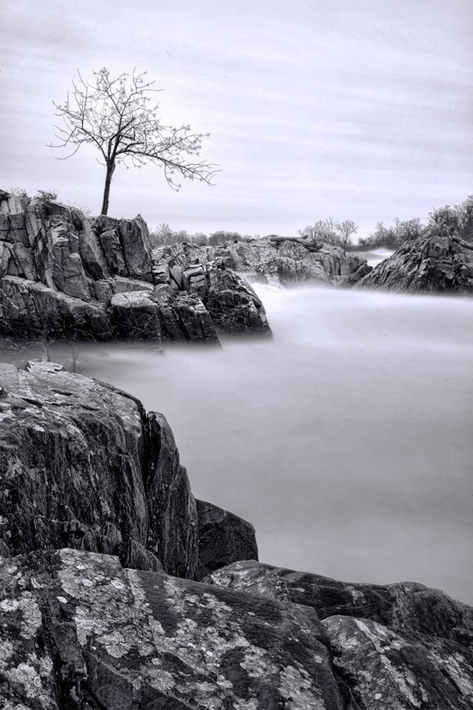 D800-Great Falls VA-0790-2014-02-08B&W