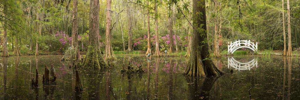 Charleston_Magnolia Gdns_Panorama1
