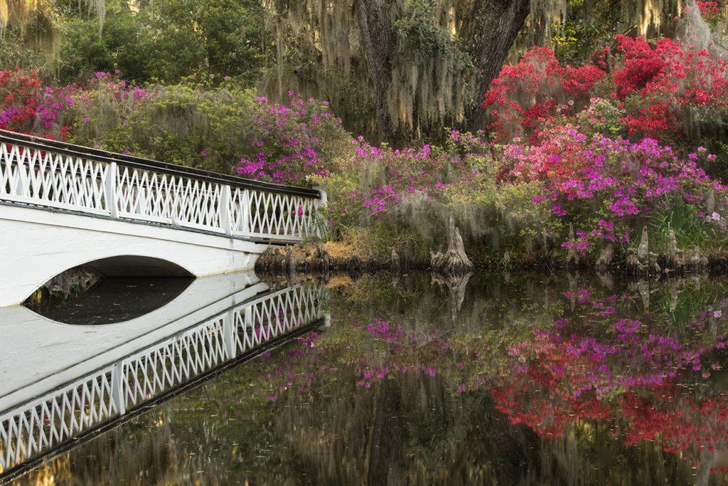 D800-Charleston Day 7-2144-2014-04-04