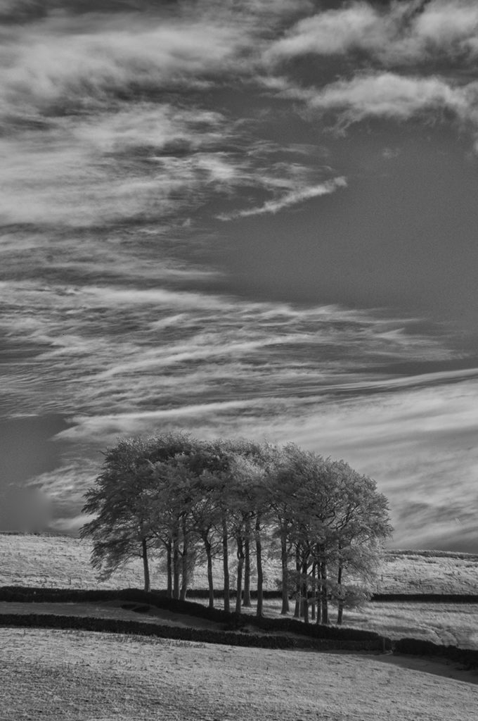 D90 IR 590nm-Peak District-0179-2014-10-11