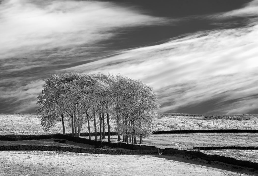 D90 IR 590nm-Peak District-0183-2014-10-11