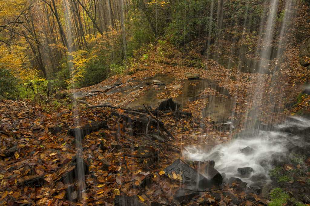 d800-wc_va_nc-waterfalls-shoot-oct-2016-1-6396-2016-10-27-brighter